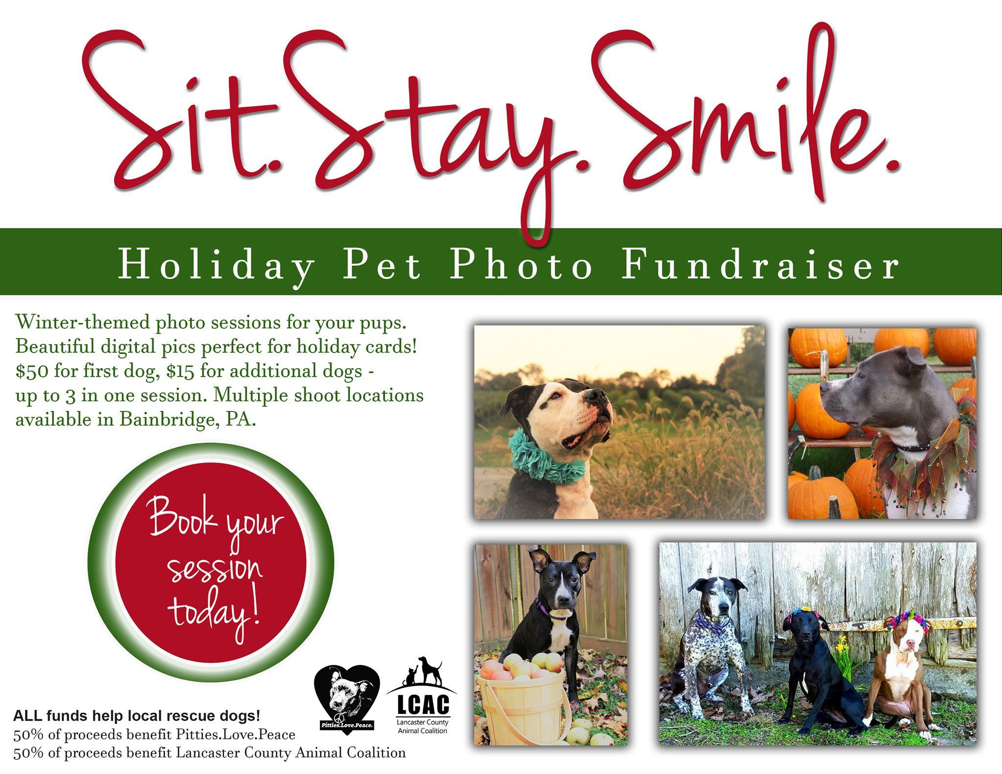 Sit. Stay. Smile. - Holiday Pet Photoshoot Fundraiser | Pitties Love ...