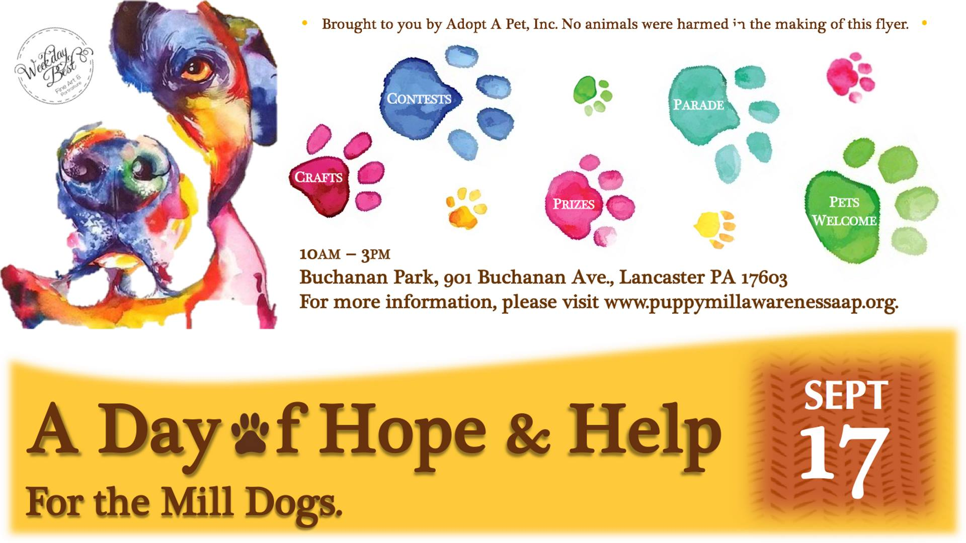 A Day of Hope & Help for the Mill Dogs - Sept 17th