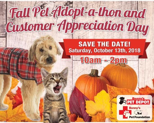 rescue dog fundraiser at BPD