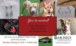 jewelry fundraiser pitbulls